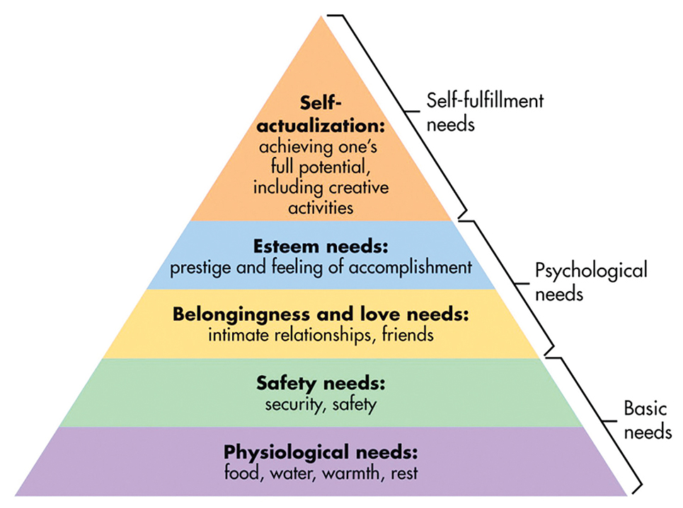 Fight Club Maslow rsquo s Hierarchy of Needs